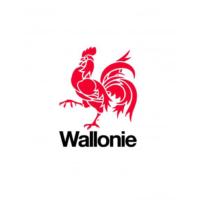 Logo Region wallonne